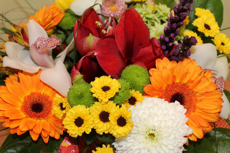 естественные картинки цветов лилии можно букетах